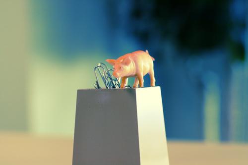 piggy work