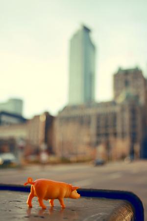 piggy city 2