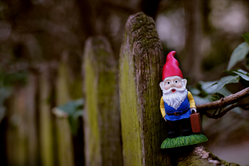gnomie in notting hill