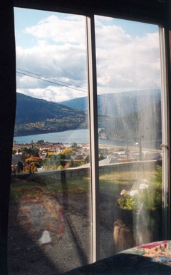 nelson-view_copy